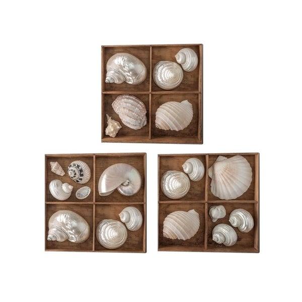 Assaf Frank 'Seashells Treasures' Canvas Art (Set of 3)