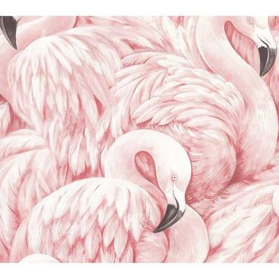 Linnett, Flamingos Wallpaper, 20 in x 33 ft = About 55 square feet