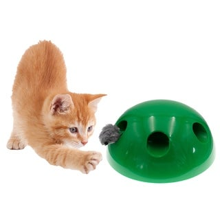 Automatic Pop Up Peekaboo Interactive Motion Cat Play Toy - Random Motorized Moving Squeaking Mouse Tease Toy