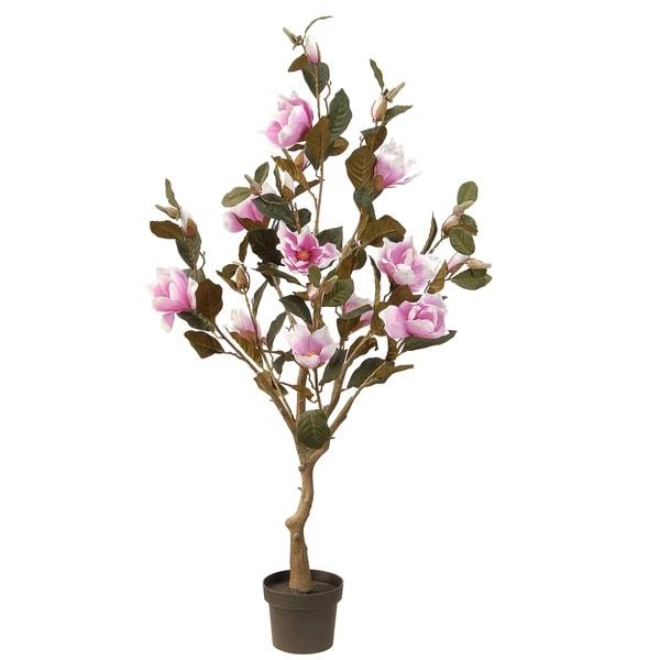 """48"""" Pink Magnolia Tree"""