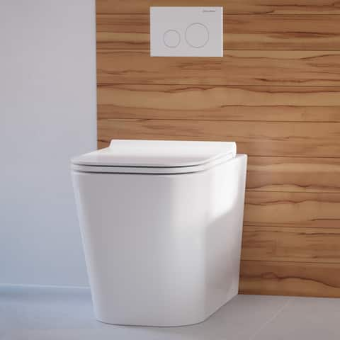 Concorde Back to Wall Concealed Tank Toilet Bowl