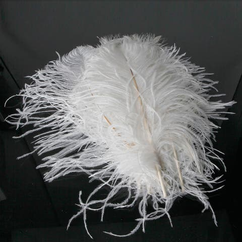 Ostrich Feather White