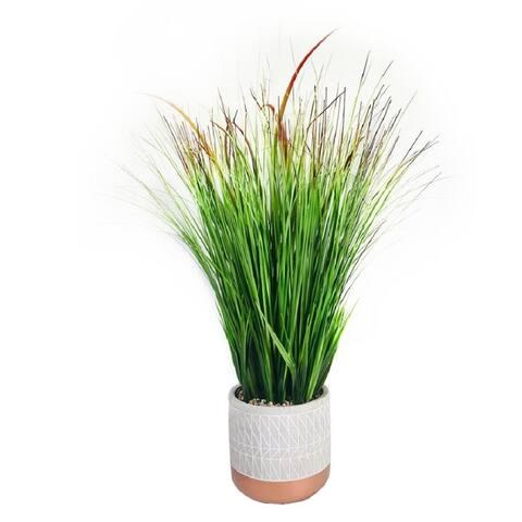 """Onion Grass Pot 25"""""""