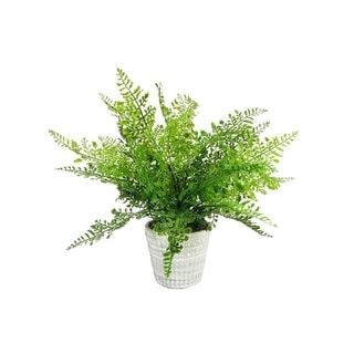 """Link to Lace Fern Pot 13.5"""" Similar Items in Decorative Accessories"""