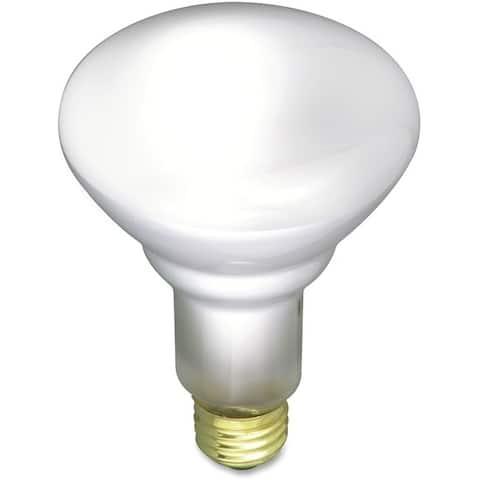Satco 65-watt Incandescent Floodlight