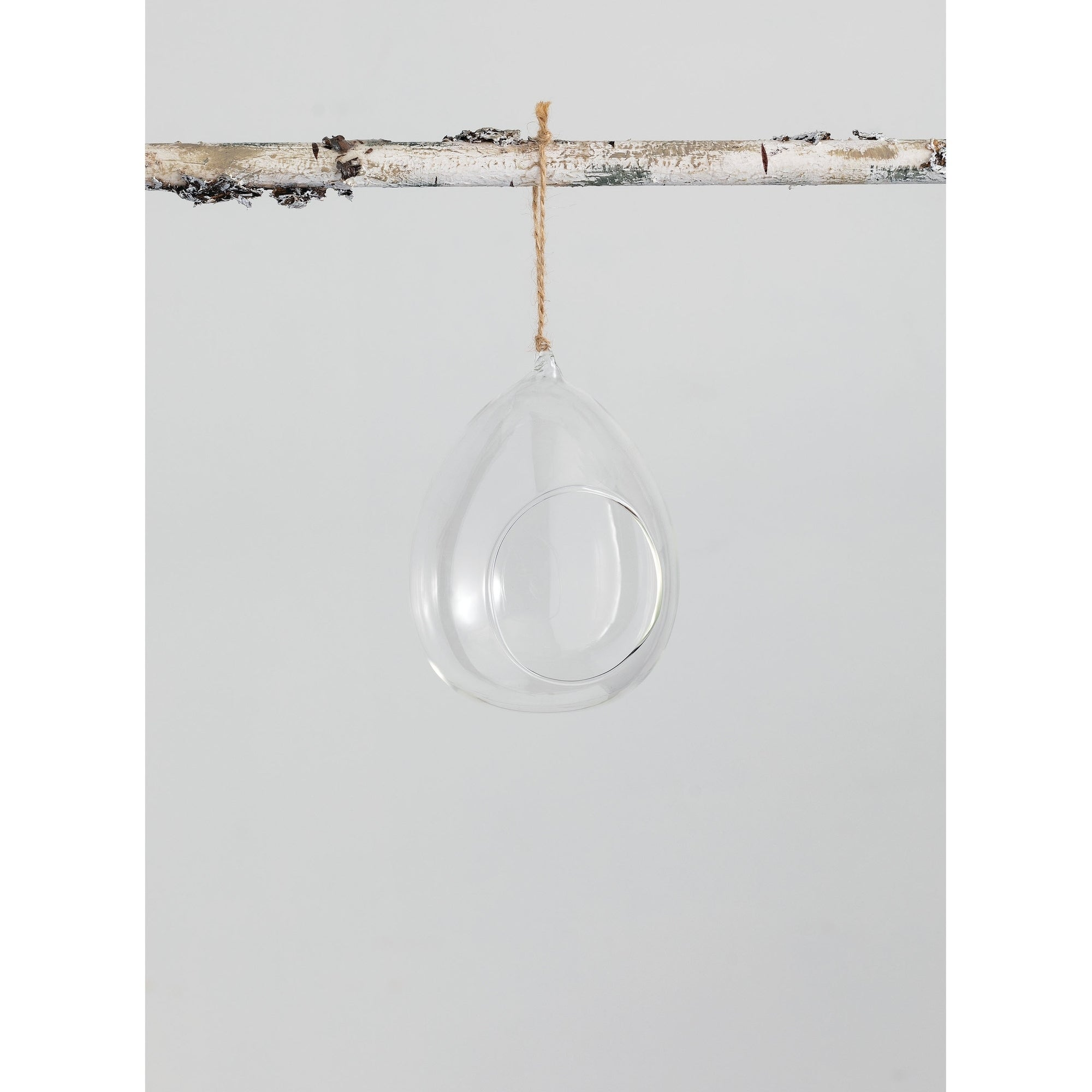 Terrarium Wall Hang In Glass Overstock 30705685