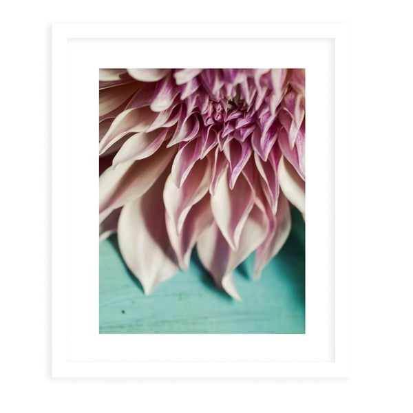 STILL LIFE OHIO NATURE FLOWERS White Framed Giclee Print By Olivia St. Claire