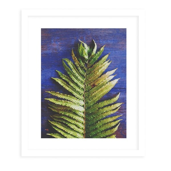 FERN White Framed Giclee Print By Olivia St. Claire