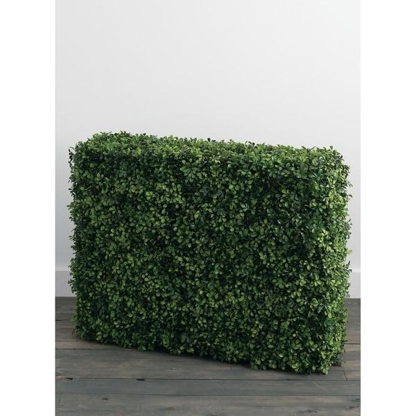 Boxwood Hedge. Opens flyout.