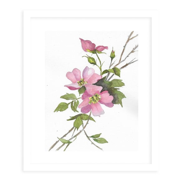 PINK ROSES White Framed Giclee Print By Jayne Conte