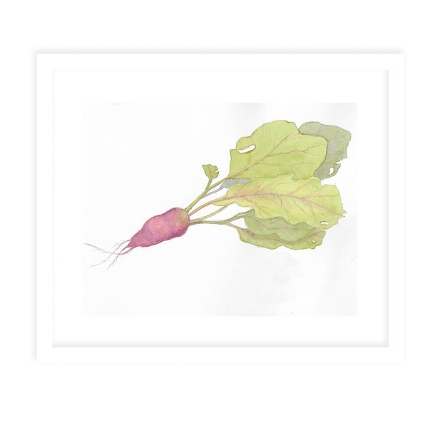 RED RADISH White Framed Giclee Print By Jayne Conte