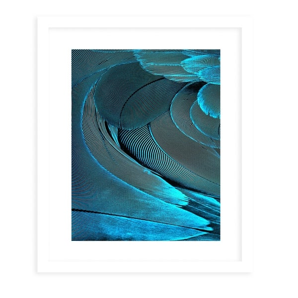 FEATHER AQUA White Framed Giclee Print By Diane Pattie