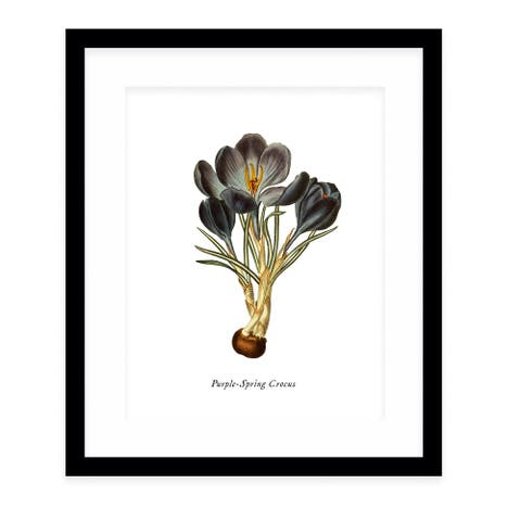 BOTANICAL FIVE Black Framed Giclee Print by Kavka Designs