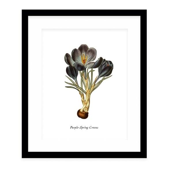 BOTANICAL FIVE Black Framed Giclee Print By Terri Ellis