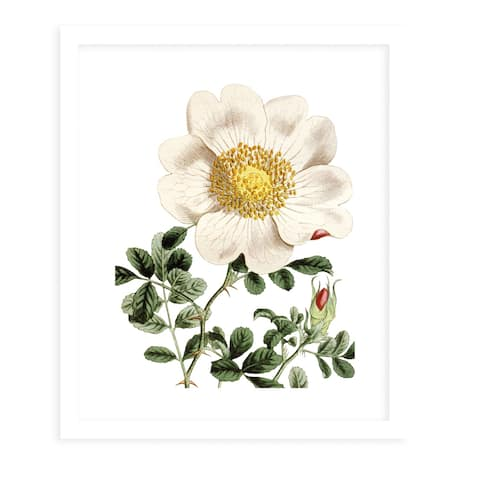 FLOWER TWO WHITE White Framed Giclee Print by Kavka Designs