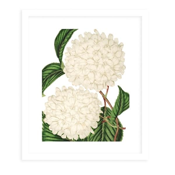 FLOWER FIFTEENTH WHITE White Framed Giclee Print By Terri Ellis