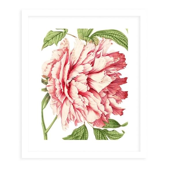 FLOWER FOURTEEN WHITE White Framed Giclee Print By Terri Ellis