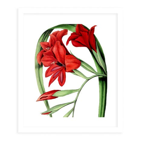 FLOWER TWELVE WHITE White Framed Giclee Print by Kavka Designs