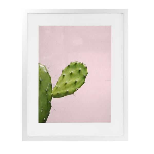 SOUTHWEST CACTUS CLOSEUP White Framed Giclee Print By Vivid Atelier