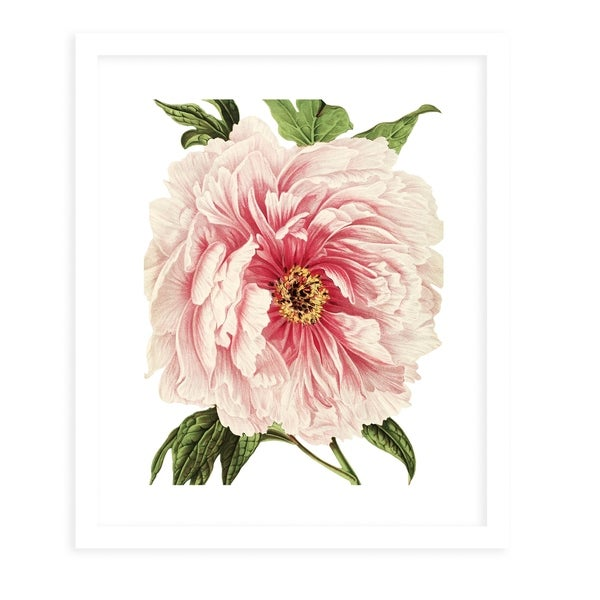 FLOWER THIRTEEN WHITE White Framed Giclee Print By Terri Ellis