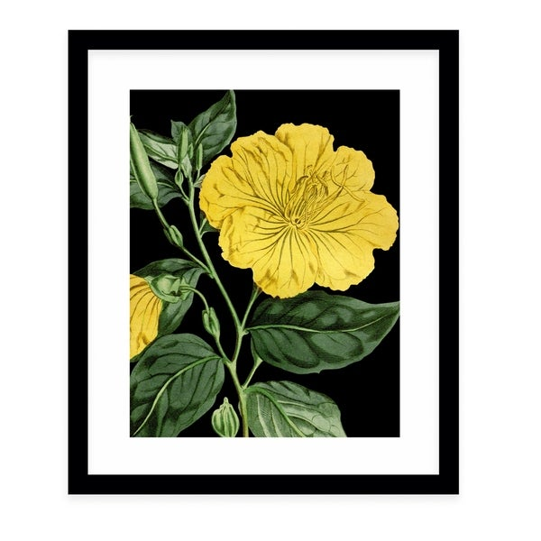 FLOWER EIGHTEEN BLACK Black Framed Giclee Print By Terri Ellis