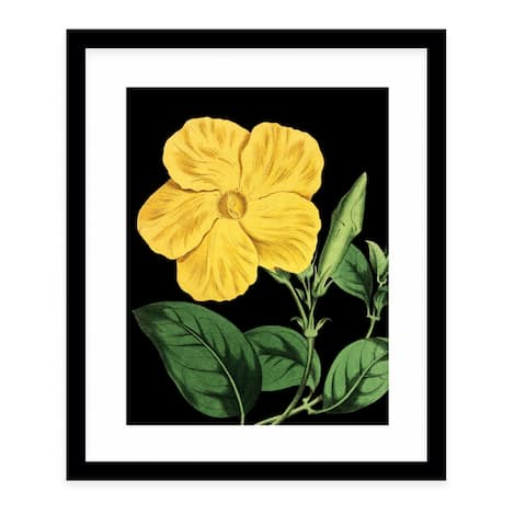 FLOWER TWENTY BLACK Black Framed Giclee Print by Kavka Designs