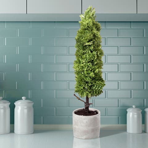 """Potted Natural Touch Skinny Juniper Topiary 20"""""""