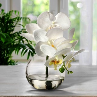 "Link to Phaleanopsis X6+3 Bud In Illusion 10"" Similar Items in Decorative Accessories"