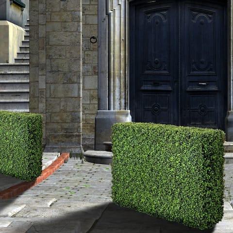 "American Boxwood Hedge 40x12x29"""