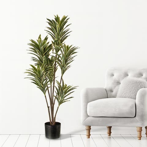 """Potted Natural Touch Baby Dracena X6 46"""""""