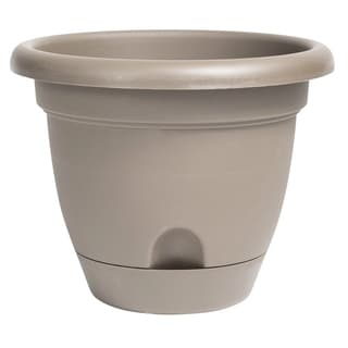 "Link to Bloem Lucca Self Watering Planter w/ Saucer 6"" Pebble Stone - 6 Similar Items in Gardening"