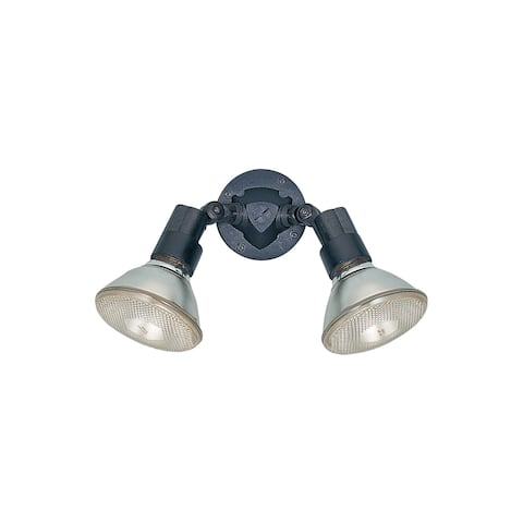 Sea Gull 2-light Adjustable Swivel Flood Light