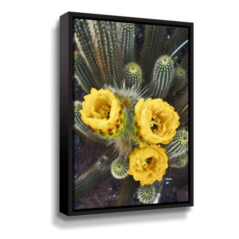 A Trio of Blooms Gallery Wrapped Floater-framed Canvas