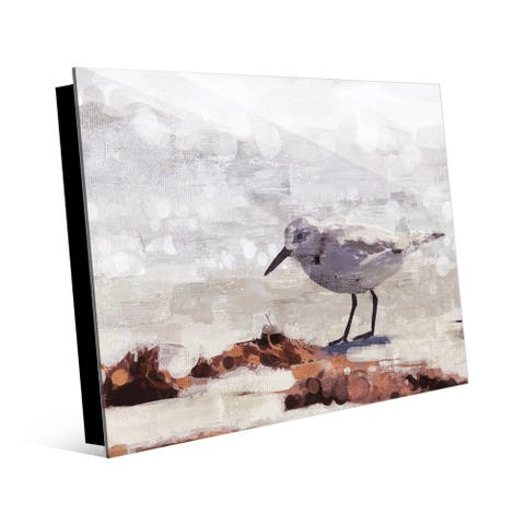 Kathy Ireland Sandpiper Painting Wall Art Print on Acrylic