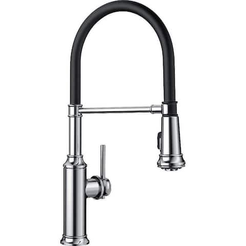 Blanco Empressa 1.5 GPM Kitchen Faucet