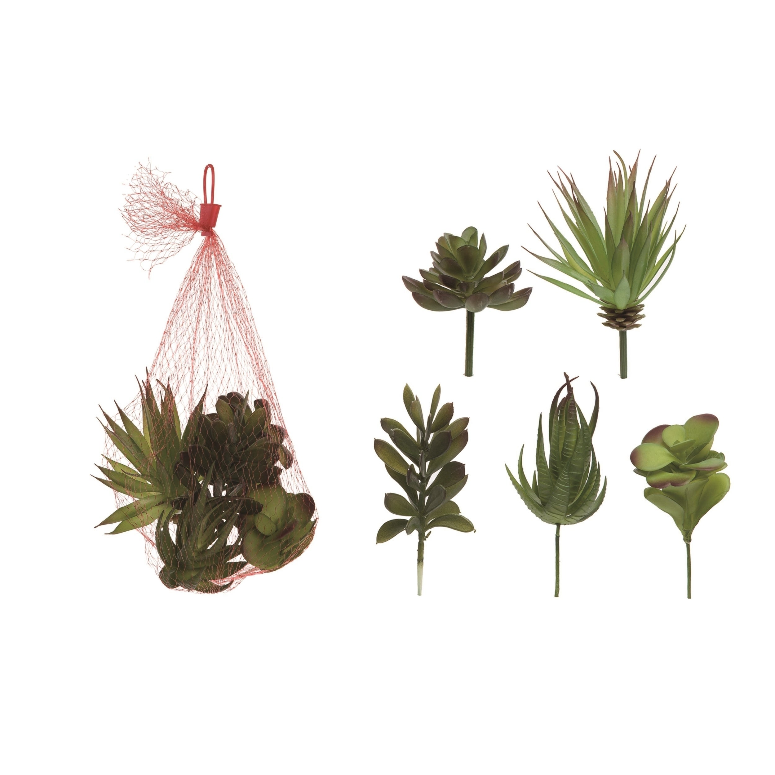 Shop Transpac Plastic 11 In Green Spring Faux Succulents Set Of 5