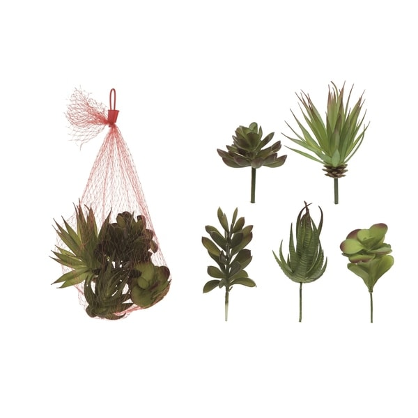 Transpac Plastic 11 in. Green Spring Faux Succulents Set of 5