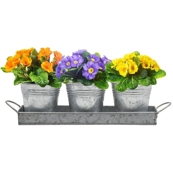 Decor Flower Pot and Tray Set - Rustic Multi-use Caddy - 8' x 10' - 8' x 10'. Opens flyout.