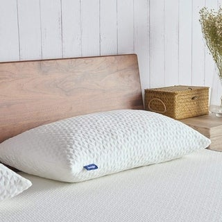 Overstock Gel Memory Foam Pillow A