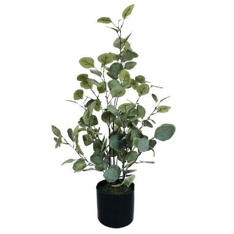 """Money Tree 30"""" Dusty Green"""