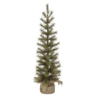 Needle Pine Pencil Tree