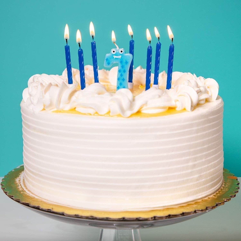 Strange Shop 154X Blue Short Cake Candles W Holder Birthday Cake Candle Funny Birthday Cards Online Overcheapnameinfo