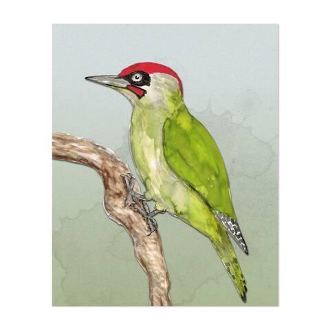 Animals Birds European Green Woodpecker Unframed Wall Art Print/Poster