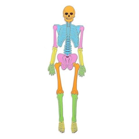 Soft Foam Human Skeleton Puzzle Double Sided 4ft Educational Toy Game for Kids Aged 5-7, Learning Human Body