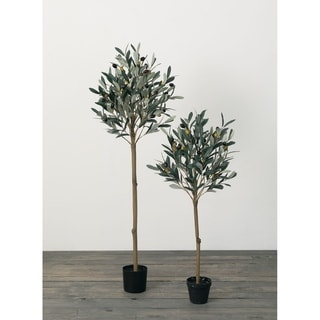 Olive Tree Topiares -Set of 2 - Green