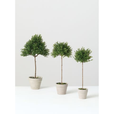 Tea Leaf Topiary -Set of 3 - Green