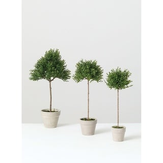 Link to Tea Leaf Topiary -Set of 3 - Green Similar Items in Decorative Accessories
