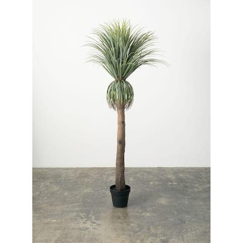 Palm Tree - Green