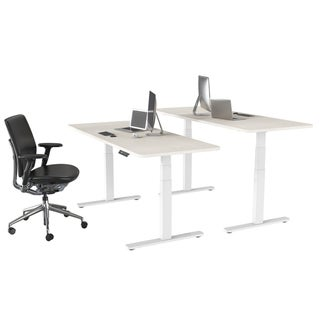 Electric Stand Up Desk Frame w/Dual Motor and Cable Management Rack