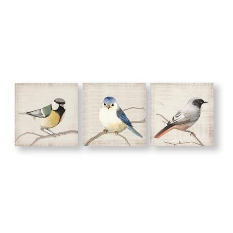 Perched Birds Canvas Wall Art Set of 3